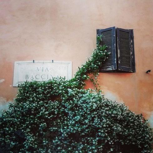 Sarà il caso che un giorno ribattezzi questo blog 365 finestre a Roma...come si fa a resistere a questa di via Baccina accarezzata da una nuvola profumata?