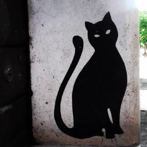 Che sia vero o, come questo di viale Furio Camillo, solo in silhouette, incontrare un gatto nero la mattina porta sempre fortuna...e non dite di no!