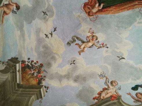 Puttini in volo in una delle sale dell'appartamento principessa Isabelle a palazzo Colonna