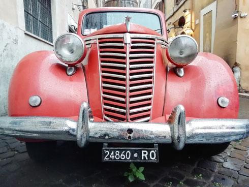 Lodi alla piantina verde che ha pensato bene di crescere sotto la macchina rossa vintage per permettermi di creare un foto perfetta