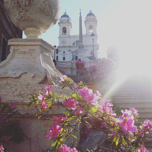 Nonostante il freddo di questi giorni sia poco primaverile, la scalinata di piazza di Spagna è in fiore. Ed è bellissima