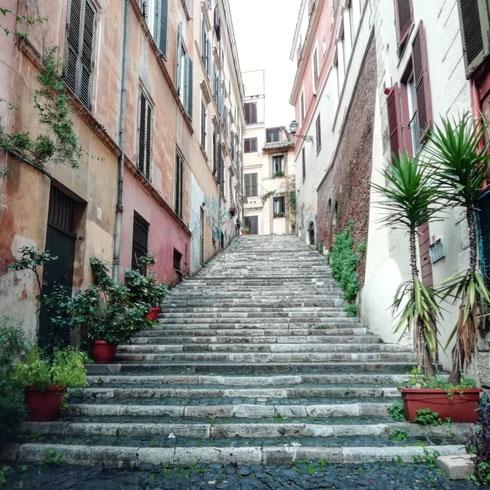 Girare l'angolo e trovarsi altrove. Nel cuore del rione Monti, via de' Ciancaleoni (il nome è quello di una famiglia che possedeva un palazzetto d queste parti) è una stradina ripida piena di scale che la mattina presto nessuno percorre. È il momento che preferisco per passare di qua