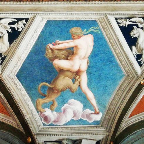 Non bastasse la pioggia, il povero Ercole deve pure lottare contro il solito leone sulla volta della Loggia di Galatea di villa Farnesina