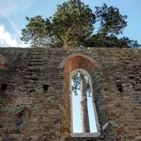 Nella chiesa di san Nicola a Capo di Bove, sull'Appia Antica, gli alberi e il cielo azzurro sono meglio di qualsiasi affresco
