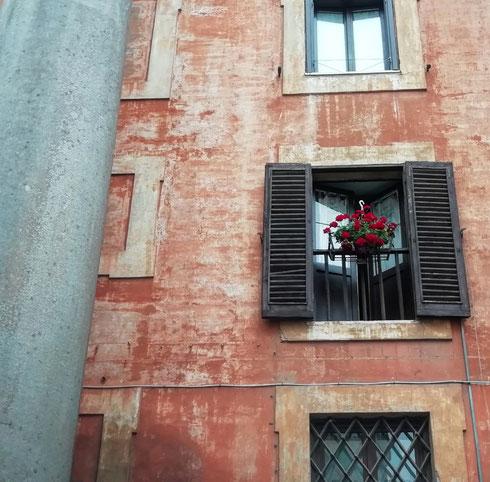 Affacciarsi la mattina e vedere le due colonne delle terme neroniane dalla finestra. Capita in via di sant'Eustachio...ma io forse preferisco la finestra in sé