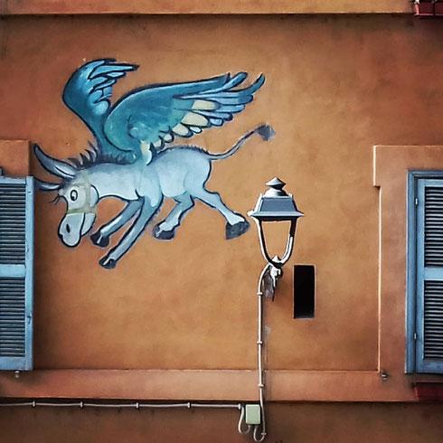 Ancora street art, ma cambiamo quartiere...avete mai visto l'asino che vola sulle case di Tor di Nona?