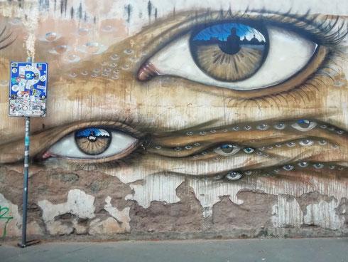 A Trastevere, tra via Morosini e piazza San Cosimato, è impossibile passare inosservati. Il merito è dello street artist inglese My Dog Sighs