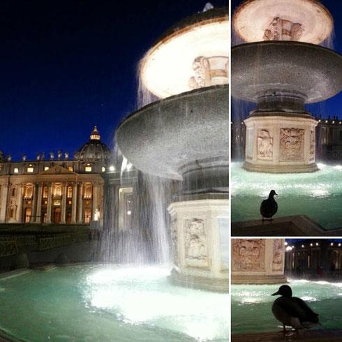 ...e intanto le anatre di piazza san Pietro si godono un bagnetto serale ignorando chi si ferma a guardarle...quack