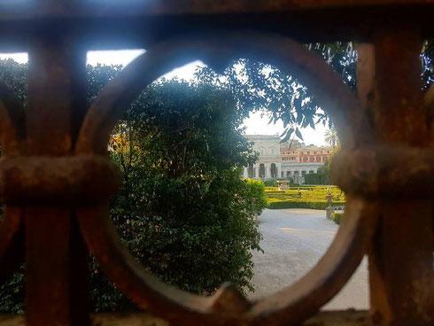 Bisogna stare in punta di piedi aggrappati al muro di cinta, ma poi villa Albani appare in tutto il suo splendore