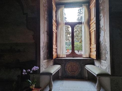 Una finestra che affaccia sul giardino, un posto per sedersi a leggere un buon libro, un fiore accanto: ecco la mia idea di giornata perfetta. E la vostra?