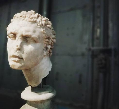 Un volto maschile, ispirato ai canoni della scultura ellenistica, e una parete di ferraglia a far da sfondo...la centrale Montemartini ci ospita per questa settimana tra l'antico e il moderno