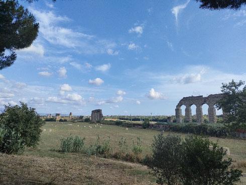 Scene dalla campagna romana di fine Ottocento. Il parco degli acquedotti ha la capacità di portare indietro nel tempo...
