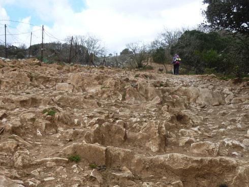 Quelques années plus tard, sur le Camino Frances... 2013... Atapuerca, on parle parfois de l'enfer de Atapuerca...