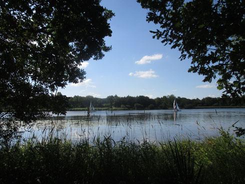 Le Lac au Duc, Ploërmel 56