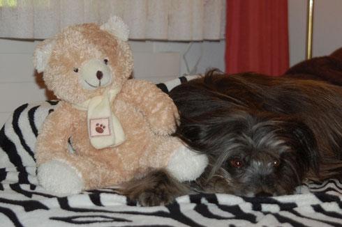 26.12.13 Gotti hat mir einen neuen Bären geschenkt