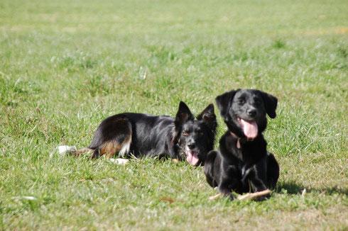 Benji und Luna