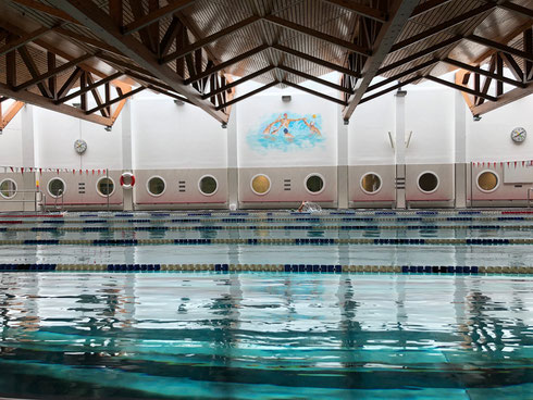 © Flamingo Salzburg - Schwimmhalle Landessportzentrum Rif