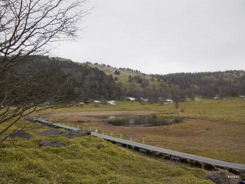 湯の丸高原 篭ノ登山 池の平湿原