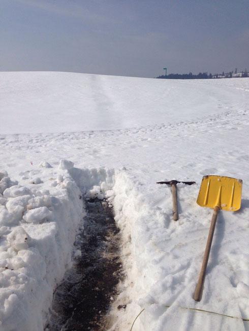 Es het no chli Schnee... Merci Presi für schufle!