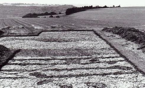 Les fouilles sur la «montagne» de Bussy avec le Mont Auxois en vis-à-vis. Crédit: Fouilles franco-allemandes (1997-1997).