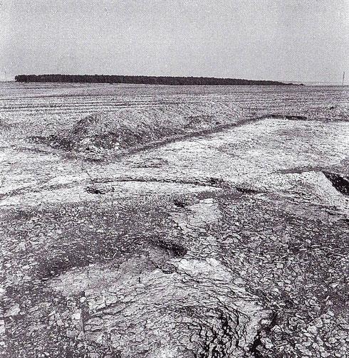 Les fouilles sur la «montagne» de Bussy. On observera que l'absence de relief aurait été tout à fait favorable à l'édification d'un camp de très grande taille. Crédit: Fouilles franco-allemandes (1997-1997).