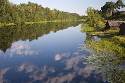 Река Видлица. Авт. фото Александр Ильин