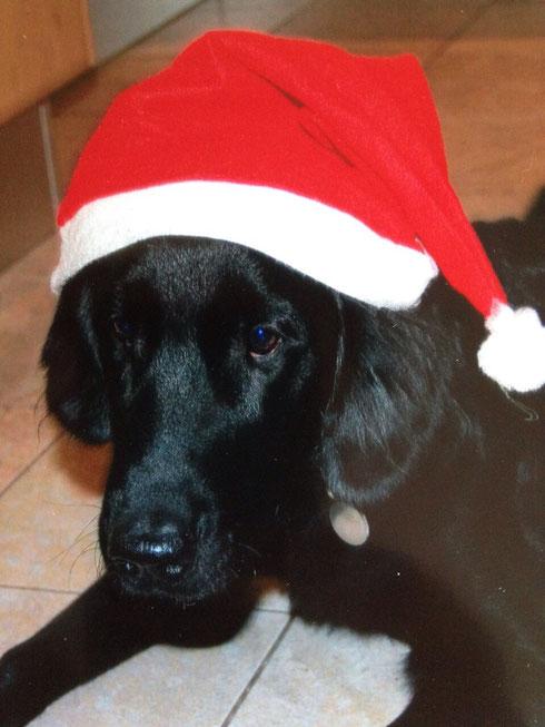 🎅frohe Weihnachten 🎄