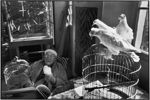 FRANCE. Alpes-Maritimes. Vence. February 1944. French painter Henri MATISSE at his home, villa Le Rêve