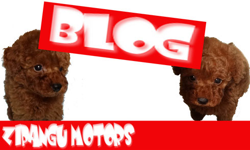 ジパングモータースブログはこちらをクリック!