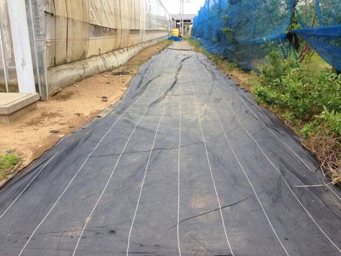 耐踏性の高い織布系防草シート