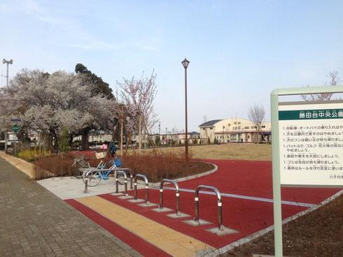 勝田台中央公園