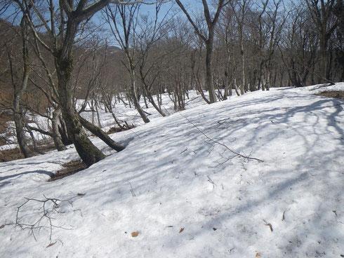 白滝山直下、雪たっぷり
