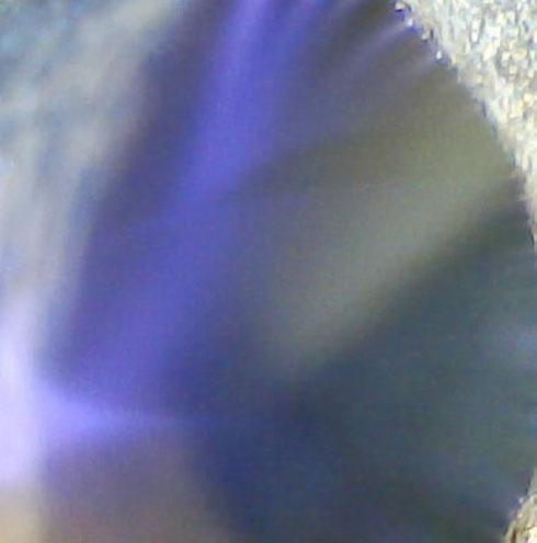 13. У света нет скорости.  Image