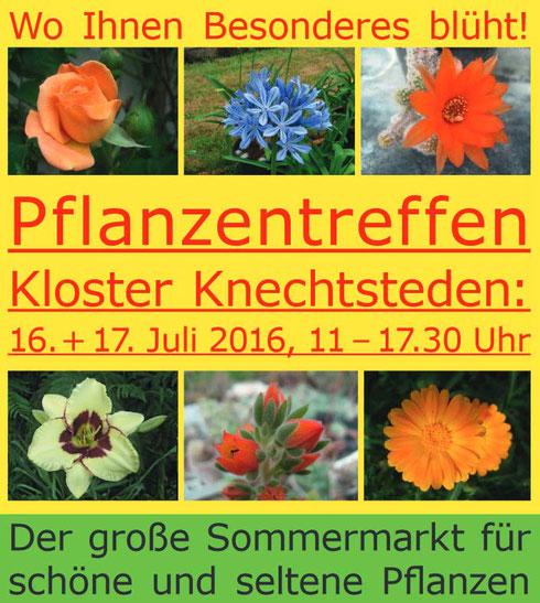 Pflanzentreffen Knechtsteden Titelbild Flyer