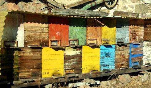 Bienenstock unter dem Stadel am Martertalhof.