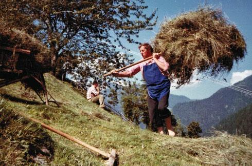 Egon im Jahr 1973 beim Heutragen am Martertalhof im Sarntal.