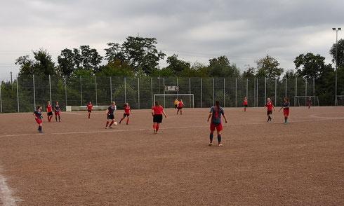Fußball-Testspiel gegen die RWE Damen II auf dem Asche-Großfeld in Essen-Borbeck (Foto: Gött)