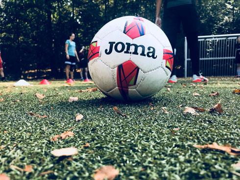 Futsal auf Kunstrasen beim Trainingslager der Futsalicious Essen Ladies in Essen-Werden (Foto: Fritz)