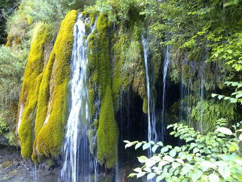 La cascade  d Aydius au printemps