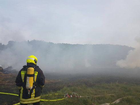 Flächenbrand Panzweiler September 2016