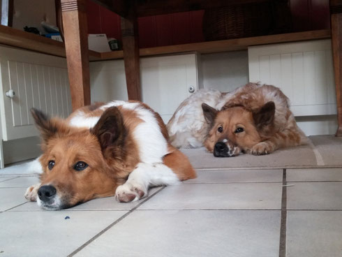 Binka macht Siesta mit Mama!