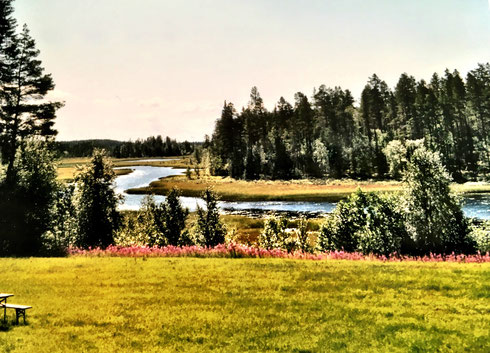 fruehling-in-lappland-am-see