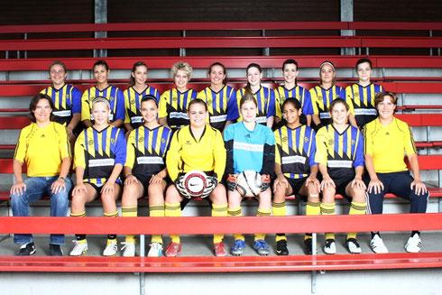 Damen 1, Saison 2010/2011