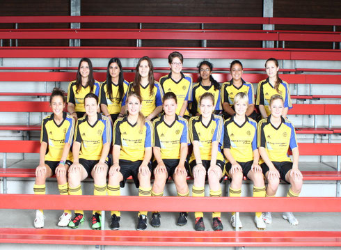 Damen 2, Saison 2010/2011