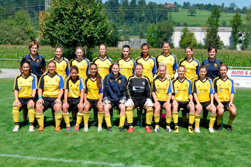 Damen, Saison 2012/2013