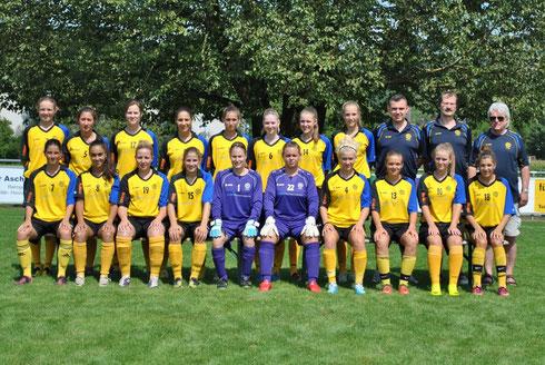 Damen, Saison 2013/2014