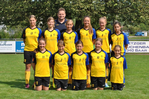 Juniorinnen D, Saison 2013/2014