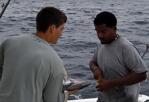 Seychellen angeln Tun Livebait Jan. 2014