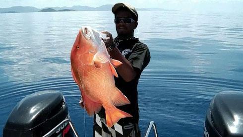 Seychellen angeln Grundangeln Snapper