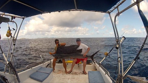 Seychelles fishing Sailfish before release Oct 2013